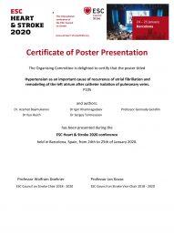 HEART & STROKE 2020 _ Poster Certificate